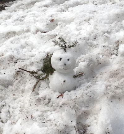 冬から春へ.jpg